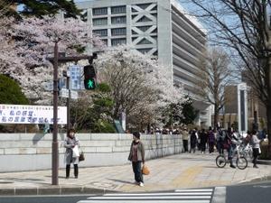Ishiwari101