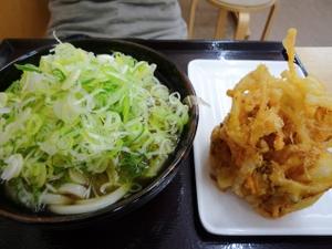 Yokoi303