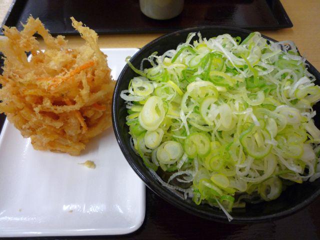 Yokoi504