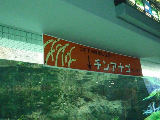 Nagoyako2024